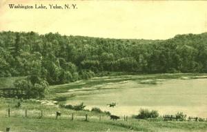 Washington Lake Postcard courtesy of Kevin M.