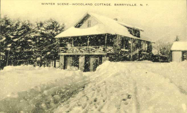 Woodland Cottages owned by the Colvilles.