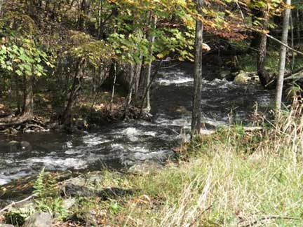 Blind Pond Brook, fall 2011, courtesy of Cynthia