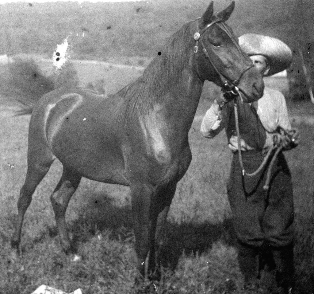 Lon Austin's brother Mort with horse in Kansas around 1880.