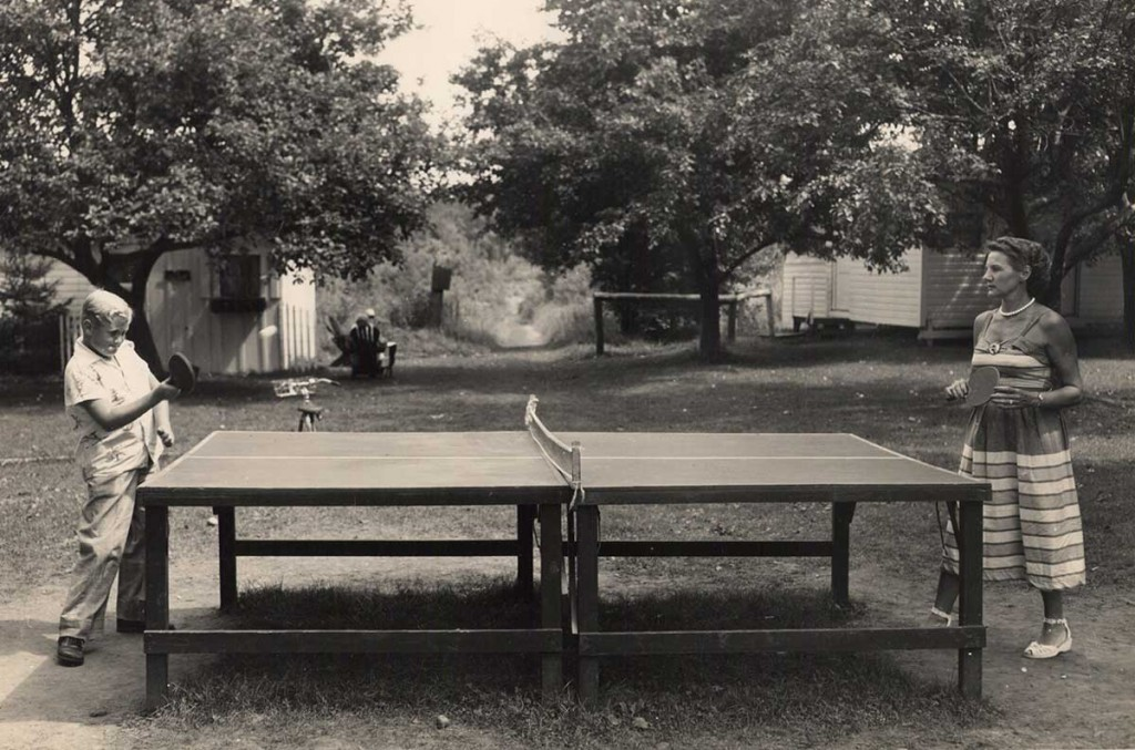 pingpong-green-meadows
